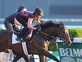 06/01/2013 - Belmont Stakes Contenders Work