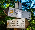 Deutschland, Bayern, Niederbayern, Naturpark Bayerischer Wald: Wegweiser auf dem Goldsteig Wanderweg im Gebiet des Grossen Arber | Germany, Bavaria, Lower-Bavaria, Nature Park Bavarian Forest: hiking trail signpost in The Great Arber region