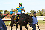 August 2, 2015. After winning the Haskell, Victor Espinoza trades his racing helmet for a cap bearing the logo of Monster Energy, a sponser of American Pharoah; groom Eduardo Luna leads the colt. American Pharoah, Victor Espinoza up, wins the  Grade I William Hill Haskell Invitational Stakes, one and 1/8 miles on the dirt  for three year olds at Monmouth Park in Oceanport, NJ. Bob Baffert is trainer; Ahmed Zayat is owner. Joan Fairman Kanes/ESW/CSM