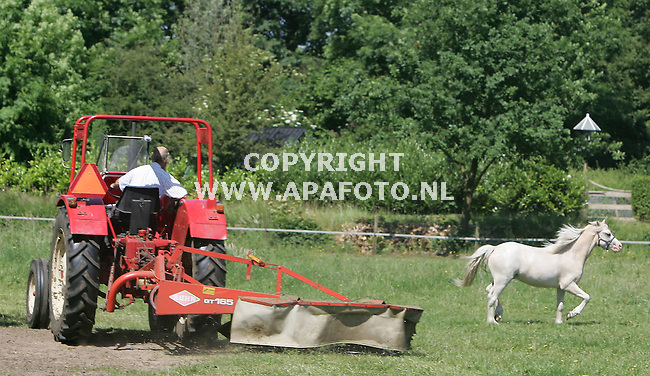 Zelhem 200605 Sta je als paard lekker te grazen, komt je baas je het gras voor de voeten wegmaaien,<br />foto Frans Ypma APA-foto