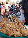 Chickens for sale in Mandalay