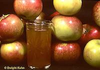 HS25-002b  Food - apples and apple cider