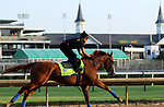 LOUISVILLE, KY --MAY 14: Justify gallops at Churchill Downs, Louisville, Kentucky with exercise rider Humberto Gomez in preparation for the Preakness Stakes in Baltimore, Maryland.  (Photo by Mary M. Meek/Eclipse Sportswire/Getty Images)