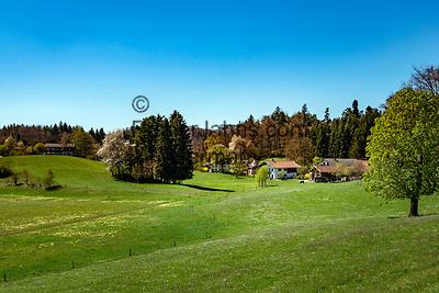 Germany, Bavaria, Upper Bavaria, Chiemgau, near Seeon: spring landscape near Monastery Seeon | Deutschland, Bayern, Oberbayern, Chiemgau, bei Seeon: Fruehlingslandschaft beim Kloster Seeon
