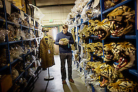 A man looks at a hat made out of leopard skin in a repository of the U.S. Fish & Wildlife Service where animal parts are stored that have been seized by US Customs.