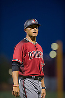 AZL Diamondbacks manager Javier Colina (22) during the game against the AZL Cubs on August 11, 2017 at Sloan Park in Mesa, Arizona. AZL Cubs defeated the AZL Diamondbacks 7-3. (Zachary Lucy/Four Seam Images)