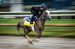 September 2, 2020:  NY Traffic exercises as horses prepare for the 2020 Kentucky Derby and Kentucky Oaks at Churchill Downs in Louisville, Kentucky. The race is being run without fans due to the coronavirus pandemic that has gripped the world and nation for much of the year. Evers/Eclipse Sportswire/CSM