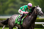 ELMONT, NY - JUNE 11: Pure Sensation, ridden by Jose Ortiz, leads the field in the home stretch to win the Jaipur Invitational Stakes on Belmont Stakes Day before the 148th Belmont Stakes on June 11, 2016 in Elmont, New York. (Photo by Douglas DeFelice/Eclipse Sportswire/Getty Images)