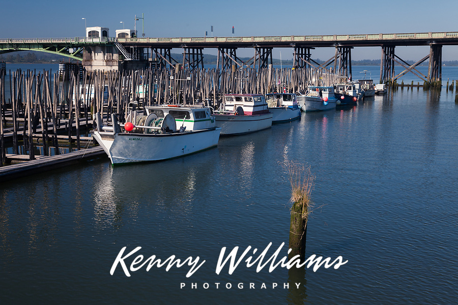 Commercial Fishing Boats, Astoria Marina, Oregon, OR, America, USA.