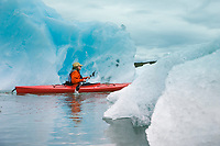 Sea kayaking among floating icebergs from the Columbia Glacier, northern Prince William Sound, southcentral, Alaska.