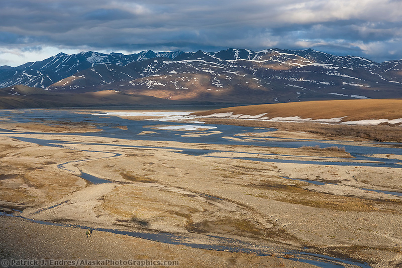 Hikers on the Kongakut River, Arctic National Wildlife Refuge, Brooks Range mountains, Alaska.
