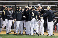 Gavin Sheets (24) of the Wake Forest Demon Deacons is congratulated by his teammates after scoring a run against the Delaware Blue Hens at Wake Forest Baseball Park on February 13, 2015 in Winston-Salem, North Carolina.  The Demon Deacons defeated the Blue Hens 3-2.  (Brian Westerholt/Four Seam Images)
