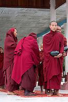 Myanmar, Burma.  Burmese Buddhist Monks Waiting to Board Boat en route to a Ceremony, Alodaw Pauk Pagoda, Nampan Village, Inle Lake, Shan State.