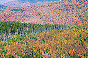 Autumn foliage from the Nubble (Haystack Mountain) in Bethlehem, New Hampshire during the autumn months.