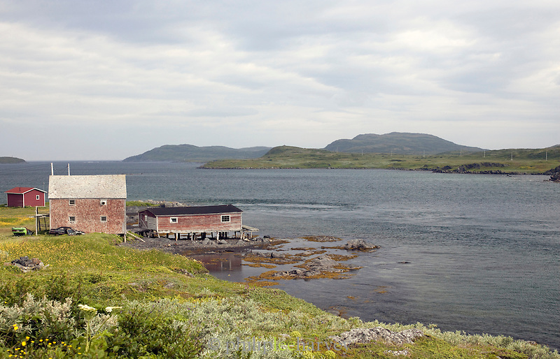Boathouse at waterside, St Anthony, Newfoundland and Labrador, Canada