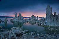 Fine art landscape image of Mono Lake and tufas, looking northeast at sunrise, with soft rose lighting the horizon and reflecting on the still lake waters; the lake is located along Highway 395 on the eastern side of the Sierras in California, and this image was published in Bay Nature's special issue on the California State Parks budget crisis.