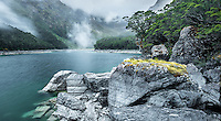 Moody morning at Lake Mackenzie on Routeburn Track with beech tree, Fiordland National Park, Southland, South Island, UNESCO World Heritage Area, New Zealand, NZ