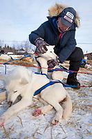 Veterinarian William Liska of Texas examines a Robert Nelson dog at the Shageluk checkpoint during Iditarod 2009