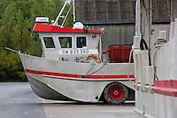 France, Ille-et-Vilaine (35), baie du Mont-Saint-Michel, classée Patrimoine Mondial de l'UNESCO, Le Vivier-sur-Mer, Port mytilicole Le Vivier-sur-Mer, Bateau Amphibie /Cherrueix // France, Ille et Vilaine, Bay of Mont Saint Michel, listed as World Heritage by UNESCO, Le Vivier sur Mer, Port mussel Vivier-sur-Mer/Cherrueix, Amphibious boat