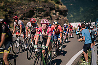 Lawson Craddock (USA/Education First-Drapac) up the final climb of the day (in Spain!): the Col du Portillon (Cat1/1292m)<br /> <br /> Stage 16: Carcassonne > Bagnères-de-Luchon (218km)<br /> <br /> 105th Tour de France 2018<br /> ©kramon