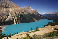 Banff National Park, Canada, Alberta, Canadian Rockies, Scenic view of the turquoise colored Peyto Lake in Banff National Park in Alberta.