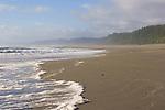 California, Pacific Ocean, North coast, wilderness beach, surf, Prairie Creek Redwoods State Park, Humboldt County, California, USA,