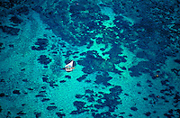 Sailing over Hawaii's crystal clear waters near Oahu