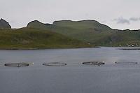 Lachszucht, Aquakultur, Aqua-Kultur, Lachsfarming in einem schwimmenden Netzgehege, Nord-Norwegen, Lofoten, Fischerei, Fischwirtschaft, Fischereiwirtschaft