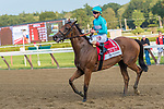 Lady Eli (no. 1) wins the Grade 2 Woodford Reserve Ballston Spa Stakes August 26 at Saratoga Race Course, Saratoga Springs, NY. The winner, ridden by Irad Ortiz and trained by Chad Brown, won by 1 1/2 lengths in the 1 1/16 mile race on the turf against four opponents. (Robert Simmons/Eclipse Sportswire)