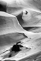 Rocky Mountain National Park, Colorado (Black & White)