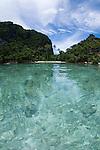 Split level photo, Misool area, Raja Ampat, West Papua, Indonesia, Pacific Ocean