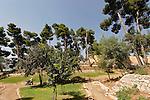 G-022 The Citadel Garden in Safed