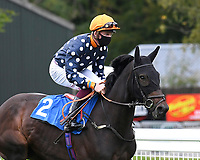 Morning Fury ridden by Rob Hornby goes down to the start  of The Venture Security Handicap Stakes  during Horse Racing at Salisbury Racecourse on 11th September 2020