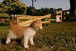 Newest farm member