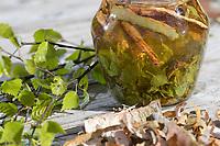 Birkenöl, Birken-Creme aus Birkenblättern und Birkenrinde, Birken-Blättern, Birken-Rinde, Blätter, Blatt. Hänge-Birke, Sand-Birke, Birke, Hängebirke, Sandbirke, Weißbirke, Betula pendula, European White Birch, Silver Birch, warty birch, oil, leaves, leaf, rind, bark, Le bouleau verruqueux, bouleau blanc