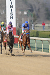 #11 Sugar Shock with jockey Channing Hill and the #1 Please Explain (KY) with jockey Drayden Van Dyke aboard after crossing the finish line during the running of the Honeybee Stakes (Grade III) at Oaklawn Park in Hot Springs, Arkansas-USA on March 8, 2014. (Credit Image: © Justin Manning/Eclipse/ZUMAPRESS.com)