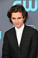 Timothee Chalamet at the 23rd Annual Critics' Choice Awards at Barker Hangar, Santa Monica, USA 11 Jan. 2018<br /> Picture: Paul Smith/Featureflash/SilverHub 0208 004 5359 sales@silverhubmedia.com