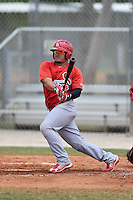 St. Louis Cardinals Joshua Lopez (15) during a minor league spring training game against the New York Mets on April 1, 2015 at the Roger Dean Complex in Jupiter, Florida.  (Mike Janes/Four Seam Images)