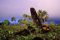 Poliahu heiau, Hawaiian temple, Wailua, Kauai