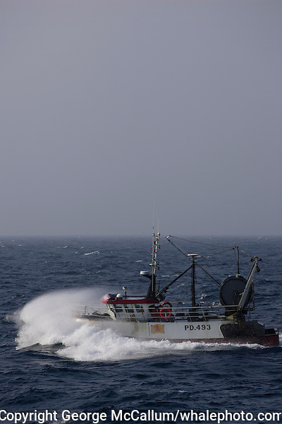 Scottish fishing trawler heading out into North sea in gale force winds