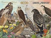 ,LANDSCAPES, LANDSCHAFTEN, PAISAJES, LornaFinchley, paintings+++++,USHCFIN0137,#L#, EVERYDAY ,vintage,stamps,puzzle,puzzles