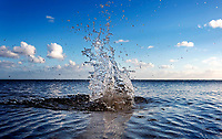 Water Sculpture: A ball thrown into a gently rippling ocean creates a splash at Maunalua Bay, East O'ahu.