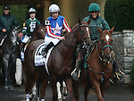 Smarty's Echo and E. T. Baird in the Dixiana Breeders' Futurity Grade 1 $400,000 at Keeneland Race Course.   October 05, 2013.