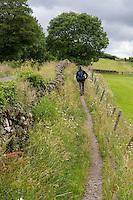 Cumbria, England, UK.  A Hiker on Hadrian's Wall Footpath near Banks East Turret.