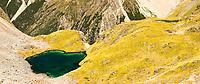 Pristine, emerald green, alpine tarns, Nelson Lake National Park, South Island, New Zealand, NZ