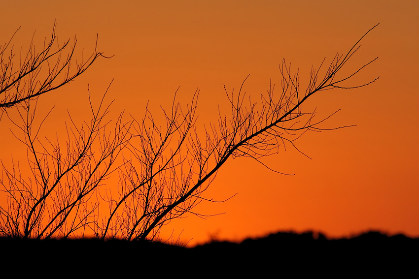 Those special moments just after the sun dips below the horizon, and the skies color shifts to orange for a brief time..
