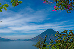 View of Volcanoes San Pedro and Atitlan through purple flowers on Lake Atitlan, Guatemala