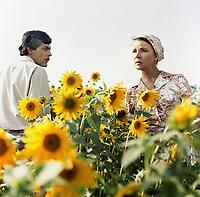 Найди на счастье подкову (1983)