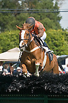 25 Apr 2009: Perkedinthesand, ridden by Jeff Murphy, on her way to winning the Daniel Van Clief Memorial filly and mare allowance hurdle race at the Foxfield Races in Charlottesville, Virginia. Perkedinthesand is owned by Mrs. S. K. Johnston, Jr and trained by Jack Fisher.