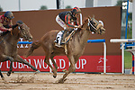 DUBAI,UNITED ARAB EMIRATES-MARCH 25: Second Summer,ridden by Patrick Dobbs,wins the Godolphin Mile at Meydan Racecourse on March 25,2017 in Dubai,United Arab Emirates (Photo by Kaz Ishida/Eclipse Sportswire/Getty Images)